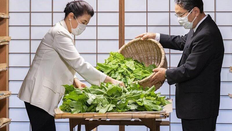 日本雅子皇后少女心贼重!戴雪花耳钉哪像57岁,重复穿旧衣超勤俭