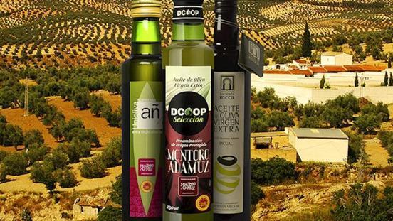 受欢迎的特级初榨橄榄油,来自安达卢西亚地区的健康美味