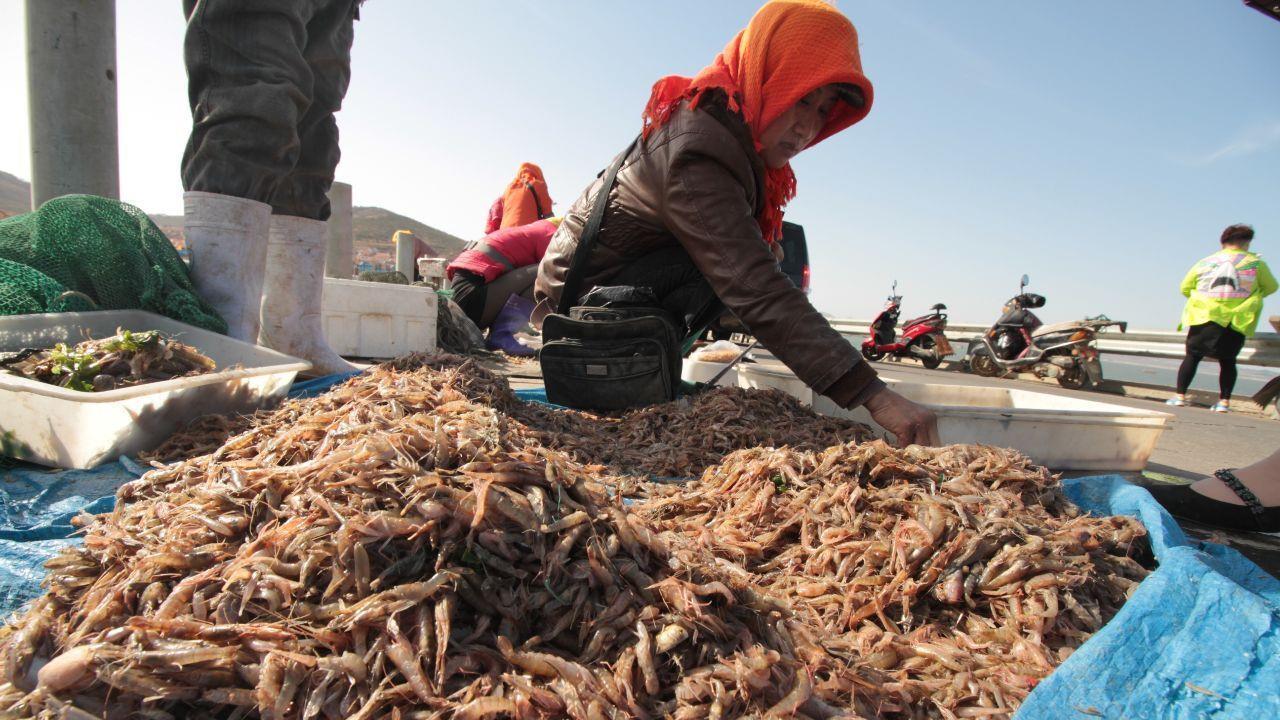 """正在消失的3种""""海鲜"""",都是小时候吃过的美味,如今价高又难寻"""