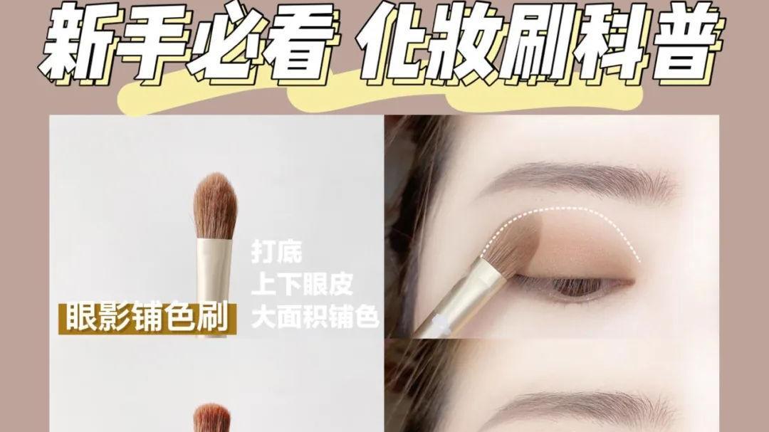 新手必看|化妆刷科普保姆级画眼影教程