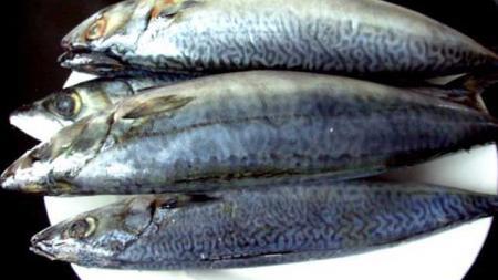 今天美食,家炖刺鲅鱼,第次做爱人都吃称着了。