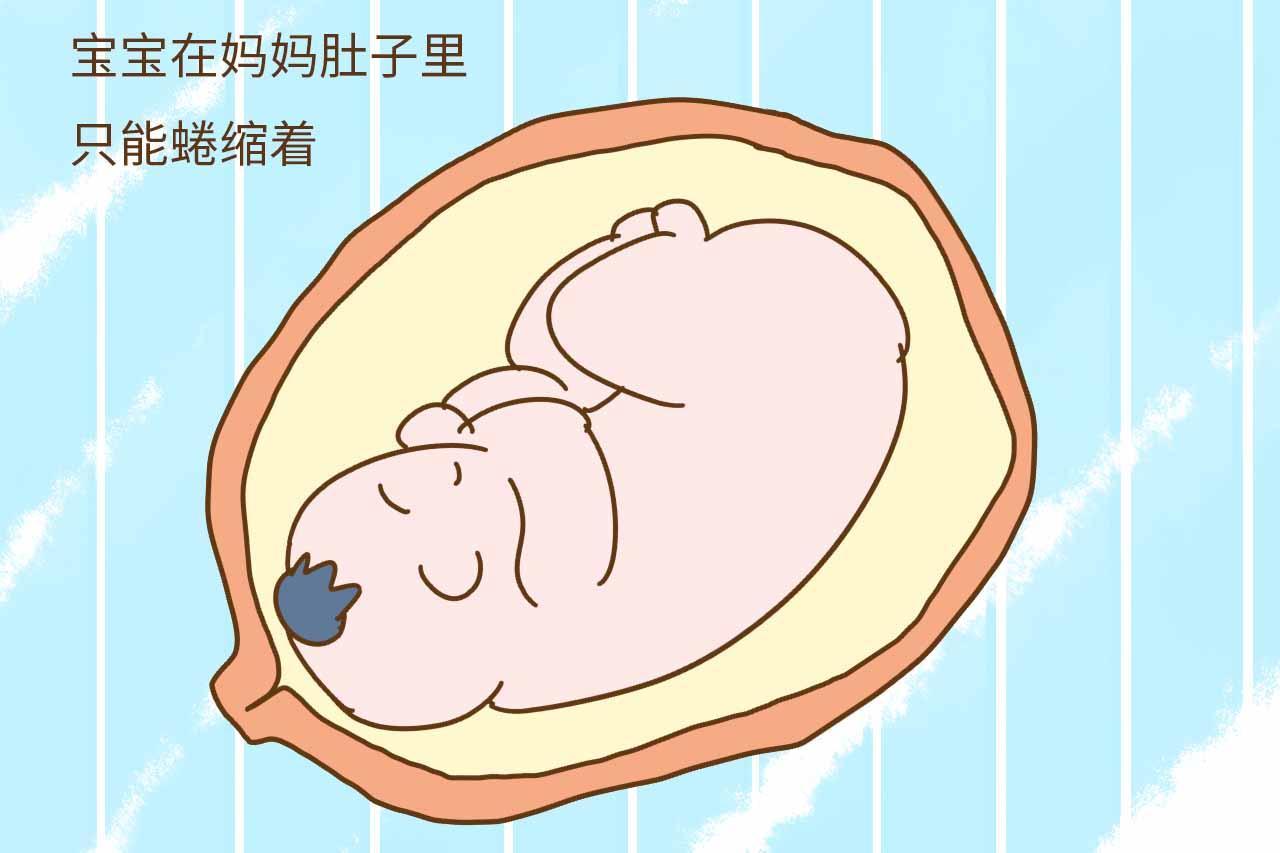 宝宝在妈妈肚子里时,空间比较小,只能蜷缩着,这不,一旦生下来,空间图片