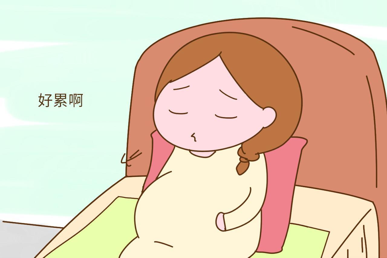 怀孕后每天感觉好累不想动, 天天都想睡觉, 有没有和我一样的?