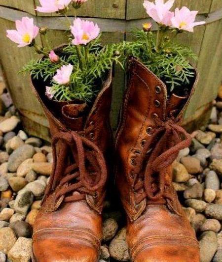 """会玩的人, 这么养花! 旧鞋、旧裤子都是""""花盆"""", 人人都能玩"""
