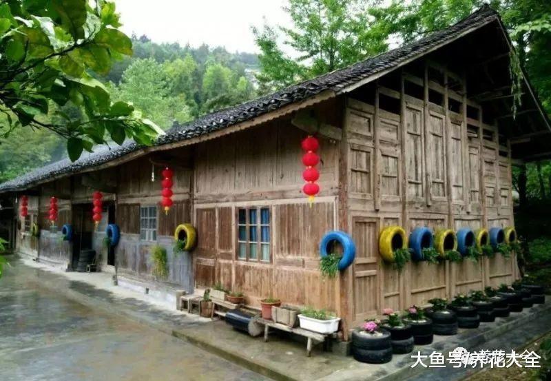 农村的老房子, 只用1年, 猪圈都被打造成了大花园!