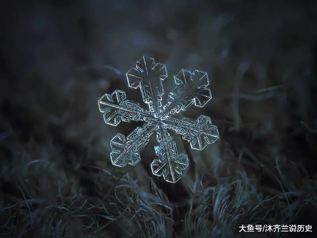 他用8个冬天拍下雪花的样子, 每一朵都如此惊艳!