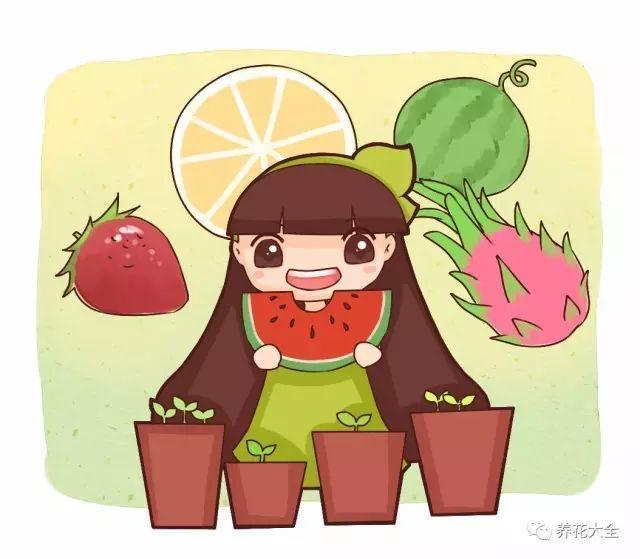 水果籽丢盆里, 呼呼冒绿芽, 长的绿萝还要快!