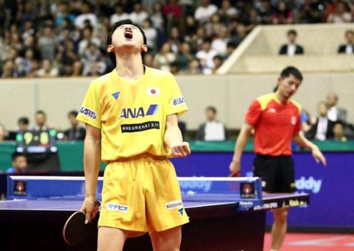 张本智和再出大言! 透露表现东京奥运会要拿多枚金牌, 让日本公众喜悦