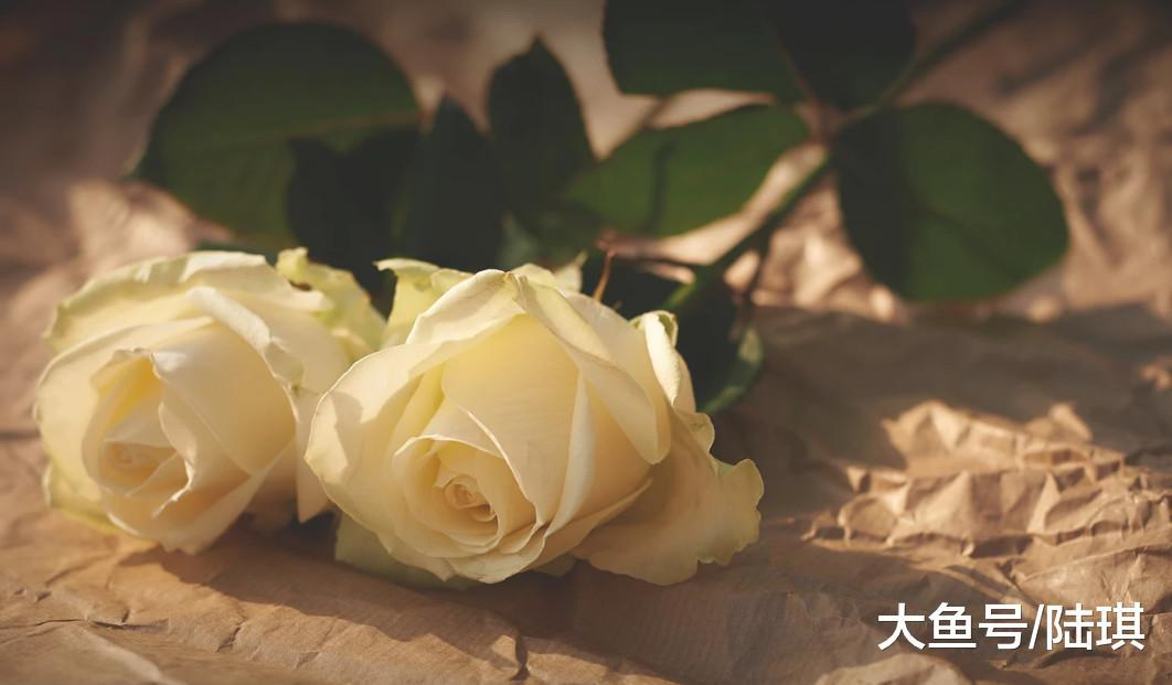 七夕, 十万人集体失恋: 我们都曾被辜负, 也曾辜负过别人