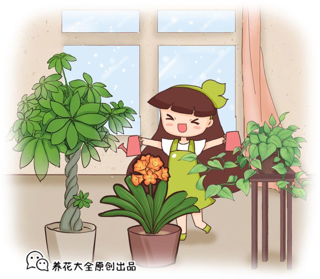 给花吃个大力丸, 根上长满小葫芦, 花盆都被撑