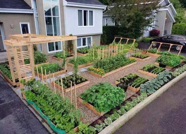 有一个庭院, 幻想过上农夫生活, 发现这样设计缺点太多了