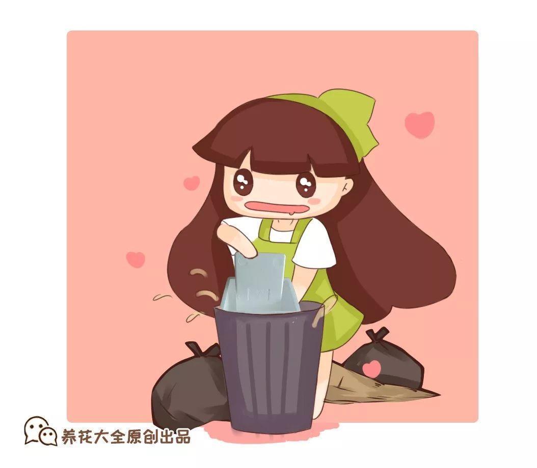 垃圾桶捡点它, 掰碎了垫盆底, 绿萝根系呼呼撑