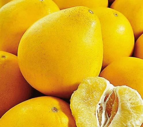 柚子好处多, 家里的花也爱吃, 拌土里就是养花肥!