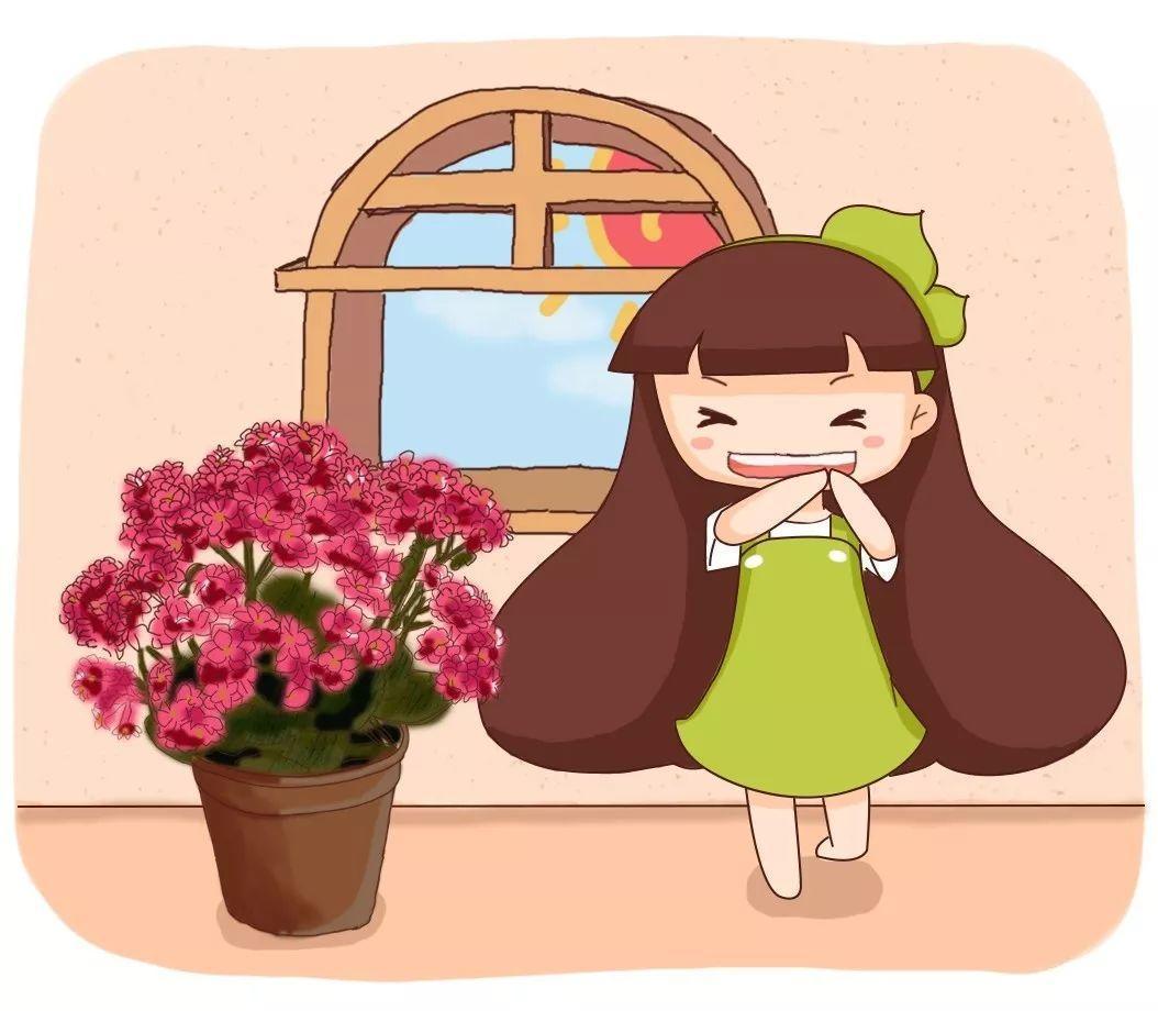 这4种花, 美艳又省心, 最适合都送给老人养!