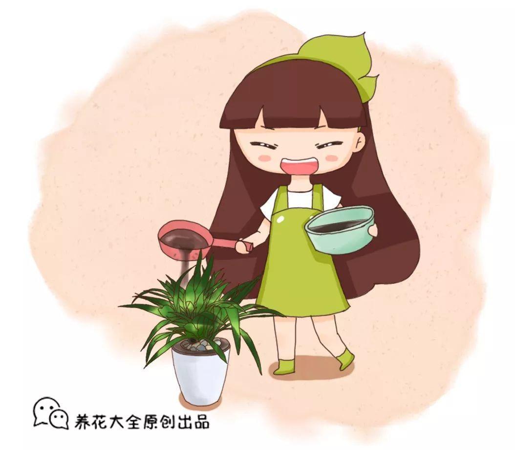 """养花土硬成疙瘩, 加这3种""""松土剂"""", 7天爆出10个芽!"""