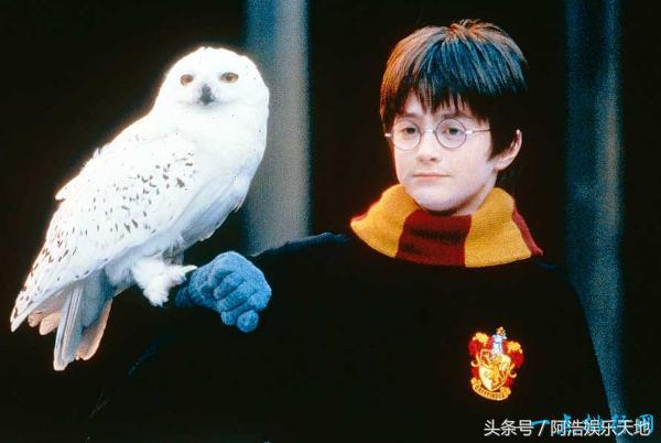 全球十大魔幻电影排行榜《哈利·波特》位居第一