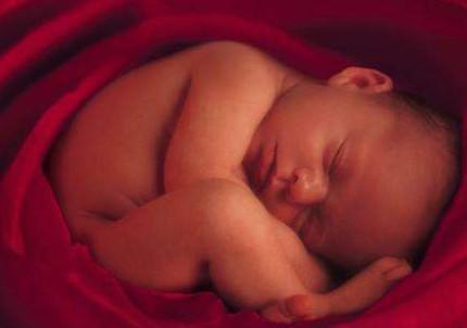 孕妈饿了的时候, 胎宝宝在干什么呢? 答案如此有趣