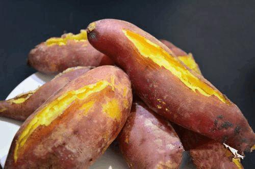 """发芽的红薯才是""""宝"""", 这样栽起来, 比绿萝还好看!"""