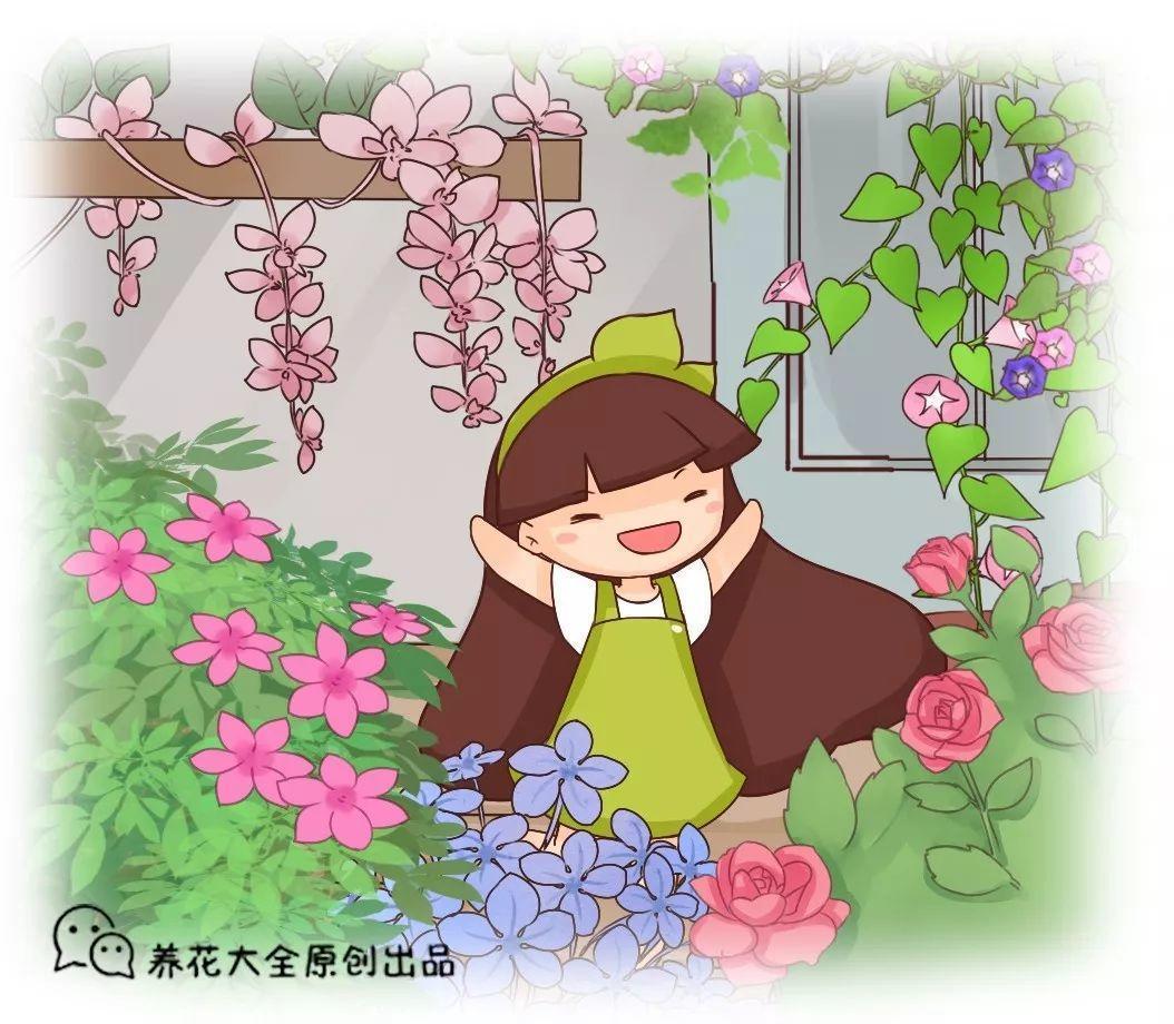 这花带有蒜香味, 爬的满墙都是, 1株开花近千朵!