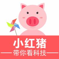 小红猪带你看科技
