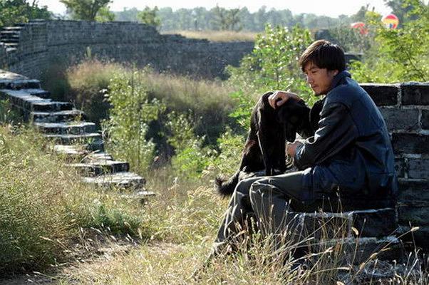 《鸡犬不宁》:优雅怀旧的汴梁开封