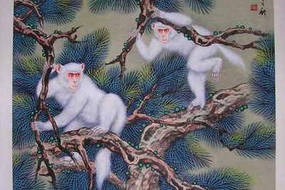 巨匠提醉:身边有属猴人么?后半死是如许!认命么?