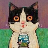 光看小猫咪