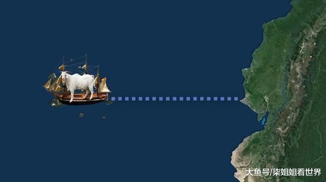小岛引入3只羊变25万只, 差点灭掉岛上居民, 政府下令全部消灭!