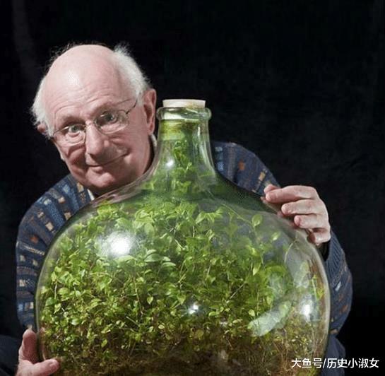 59年就浇过一次水,密闭环境中无任何养料的植物,如今长什么样