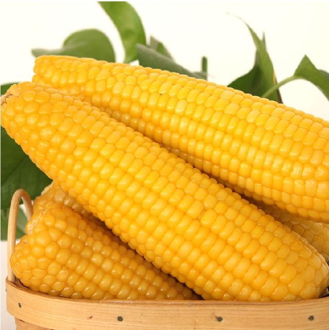 """很多人煮出""""玉米""""又老又硬,连水用错了""""水""""都不知道"""