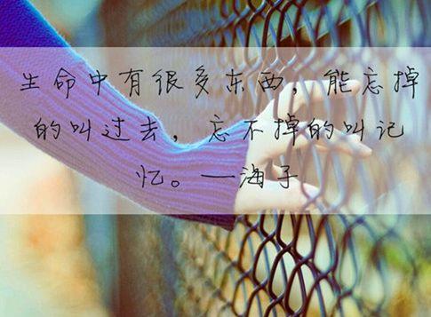 对一小我绝望透顶了的伤感道道, 唯好虐心, 总有一句刺痛您的心