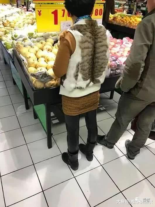 为了时尚,有些人竟穿起了猫皮!