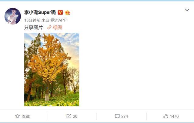 李小璐官宣离婚后首晒动态,晒出一张照片后遭网友调侃:绿到发黄