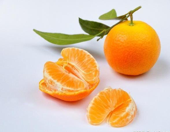 这四种水果很便宜, 对宝宝脑部发育或许有好处, 你认为呢?