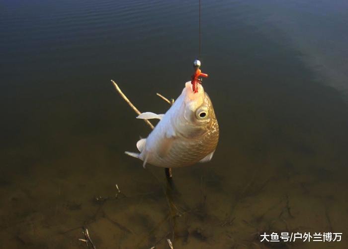 垂纶人不看白不看的做窝技能, 快速散鱼久长留鱼一面也不易