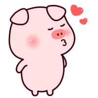 小猪看世界