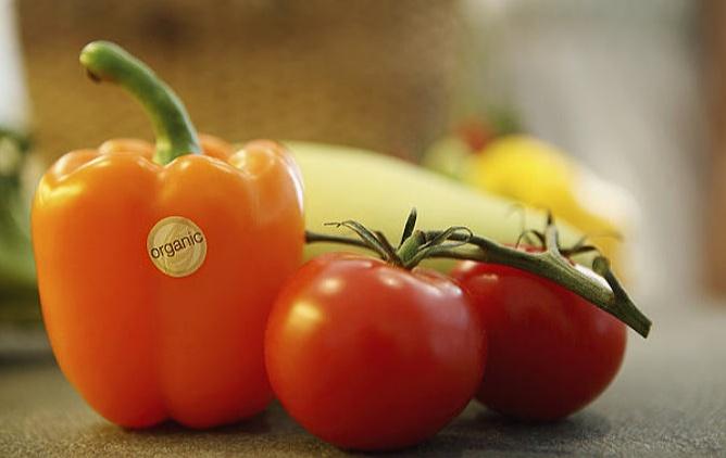 农副产物代销,让您变得加倍富有,让村庄成长强大