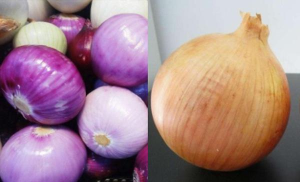 """蔬菜界""""单胞胎"""",卷心菜和紫甘蓝分不浑,悉数皆熟悉算您识货!"""