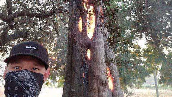 """小伙看到了一颗""""燃烧""""的树, 走近仔细观察后, 让他瞪大眼睛"""