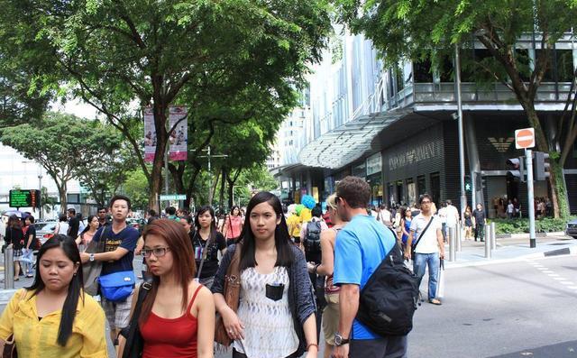 """关于""""新加坡""""的6个事真"""