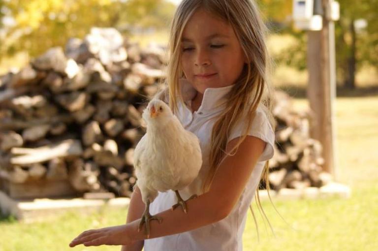 """好活动,坏名声: """"放养""""会让孩子们听起去像小鸡吗?"""