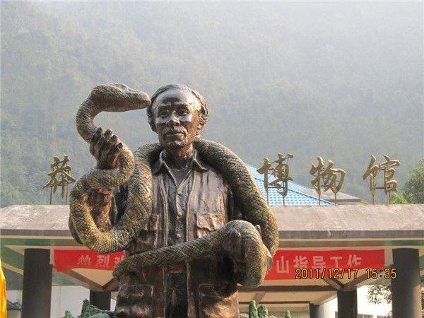 莽山烙铁头蛇:做不了最毒的蛇,便做最贵的毒蛇