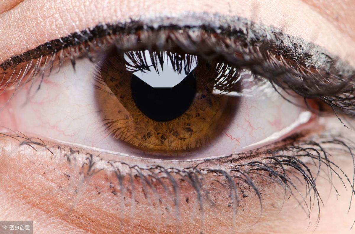 眼科 中 目