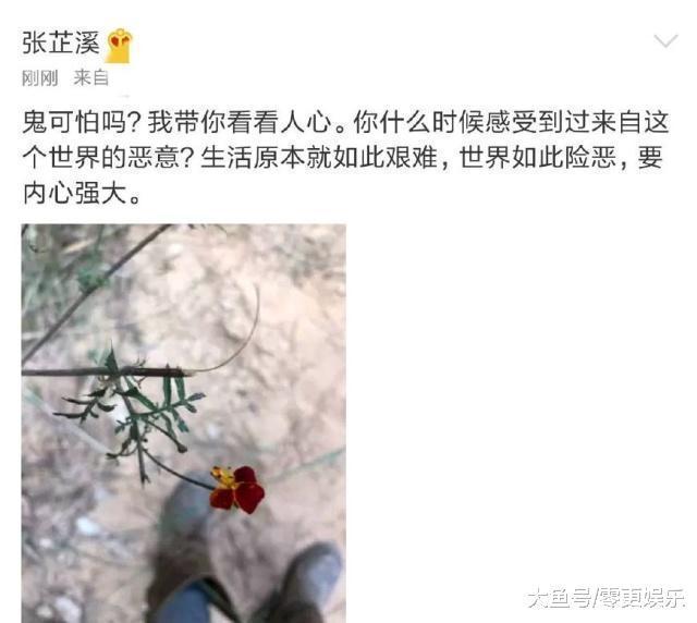吴秀波风浪让张芷溪再次躺枪, 本人发文透露表现: 糊口本来便如此艰苦