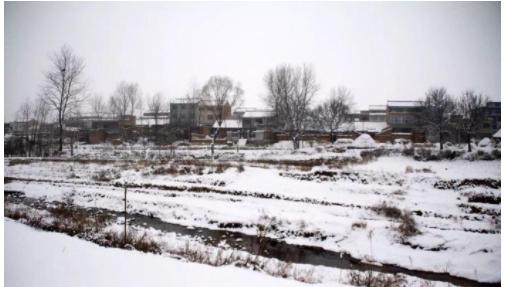 一场大雪如期降临,蓝田玉山变成了一个银色的世界。看看雪景
