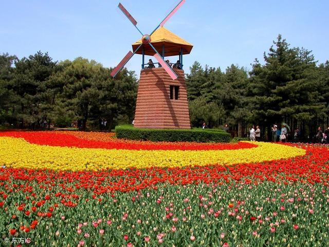 【沈阳旅游】沈阳有什么好玩的地方 沈阳旅游景点推荐 沈阳植物园