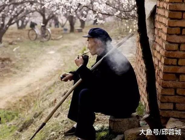"""鄙谚:""""青皮萝卜紫皮蒜,俯脸婆子垂头汉"""",在乡村里是何意义?"""