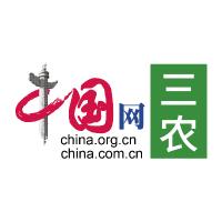 中国网三农