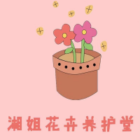 湘姐花卉养护堂