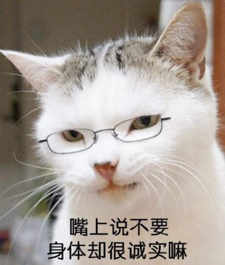 辛芷蕾:演了这么多剧,姐什么时候受过这种气?